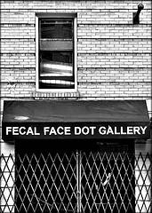 FecalFaceDotGallery