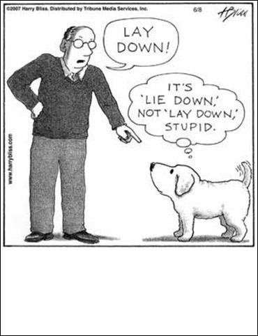lay_down