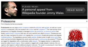jimmywales1