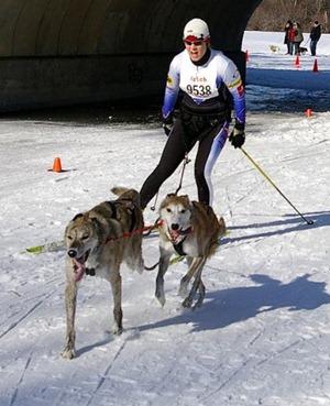 Skijoring Minnesota