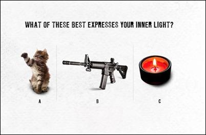 Bushmaster Inner Light