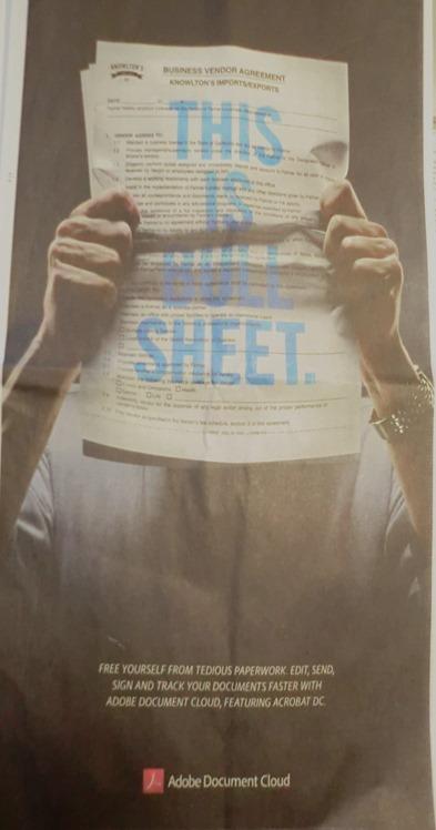 Adobe Bull Sheet
