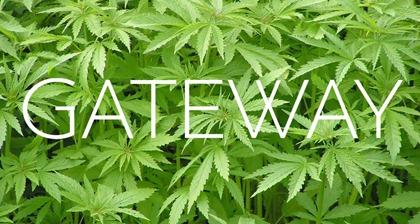 gateway-marijuana-incubator1