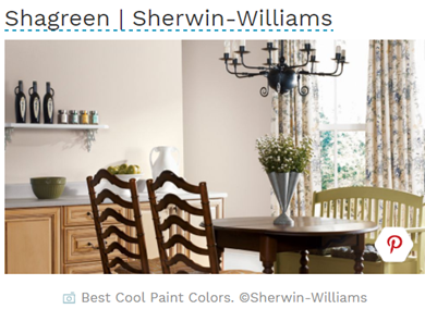 shagreen paint