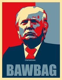 bawbag trump
