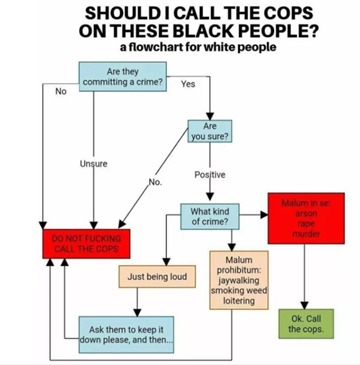 flow chart call cops