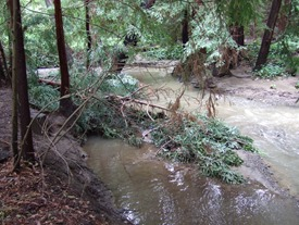 Adobe Creek Wikipedia