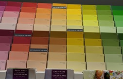 paint color chips ace hardware