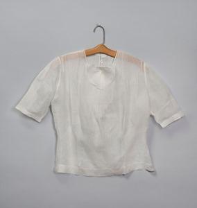 Georgia O'Keeffe blouse Bklyn Museum