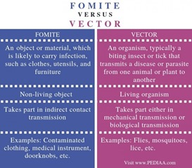 fomite vs vector
