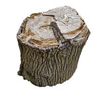 canstockphoto_chump-wood