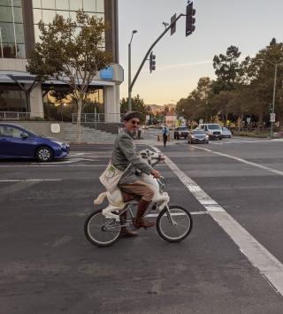 Horseycycle