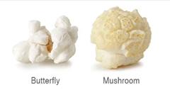 butterfly mushroom popcorn