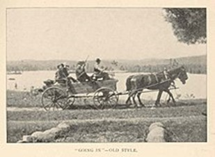 shooting brake horse