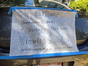 corpse flower sign